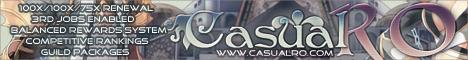 CasualRO Banner
